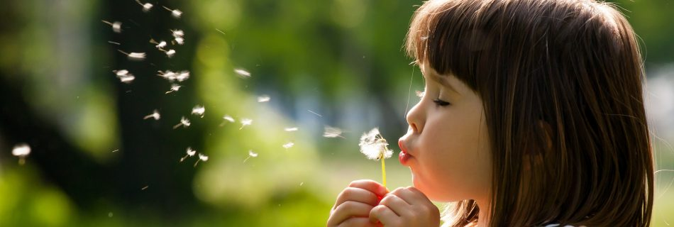 5 natural hay fever remedies, so you can still enjoy the summer