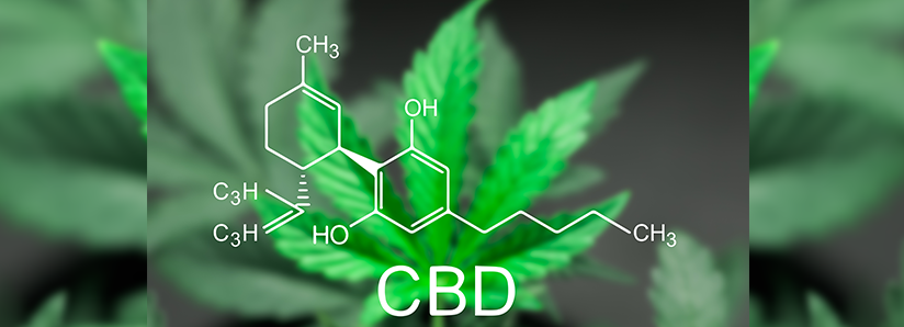 5 Reasons we love CBD oil