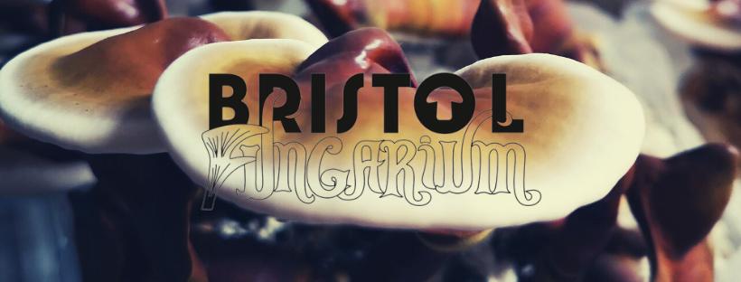 The Bristol Fungarium