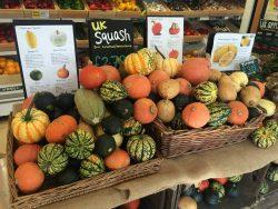 Community Farm produce squashes