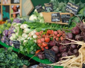 Why organic food plays a fundamental role in naturopathy