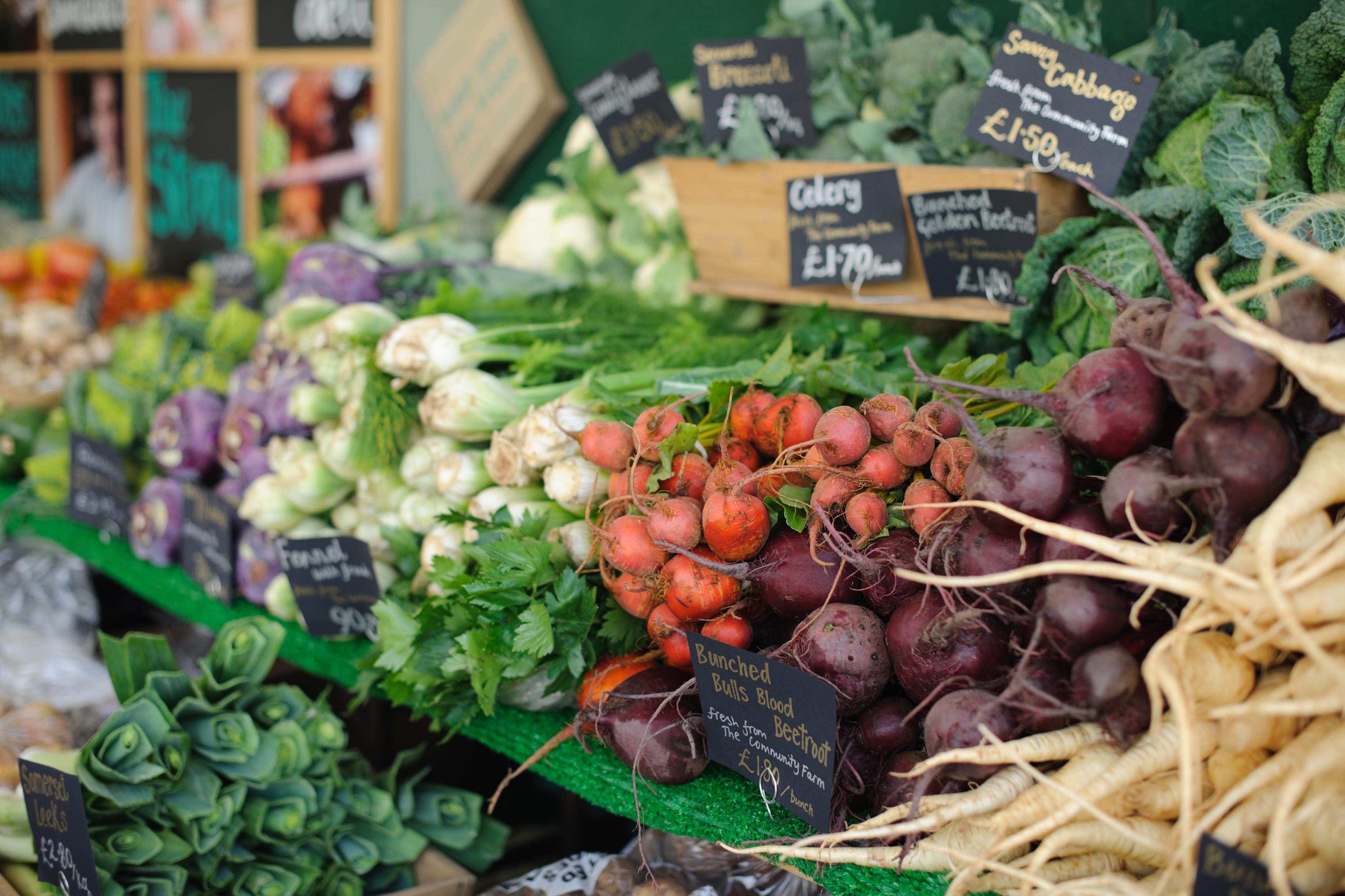 Why organic food plays a fundamental role in naturopathy