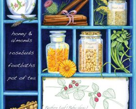 Herbalist consultation: women's and family health
