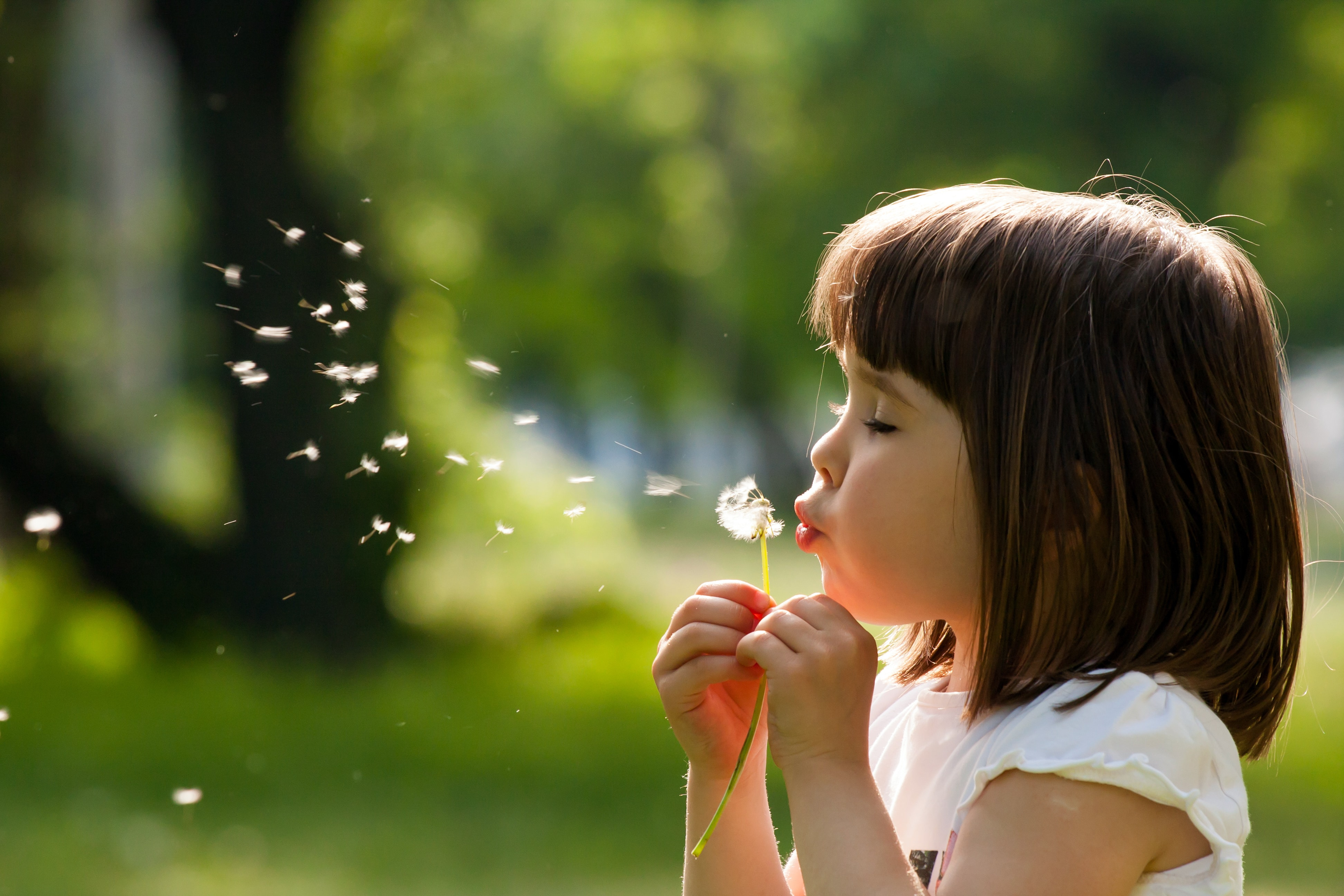 10 ways to prevent and treat hay fever naturally, so you can still enjoy the summer