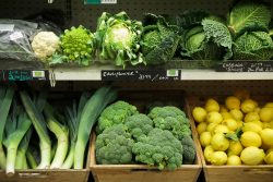 Veg selection_Better Food
