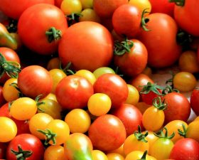 Senen's guide to tomatoes