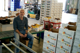 BioVergel – citrus fruit