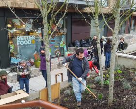 Edible Bristol Work Party – Wapping Wharf