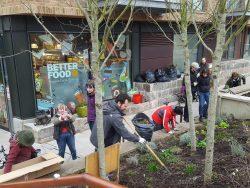 edible bristol, bristol, wapping wharf, better food, community, event, grow your own, garden, gardening